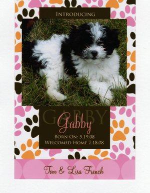 Gabby011_2